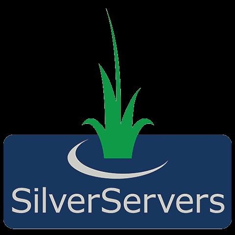SilverServers